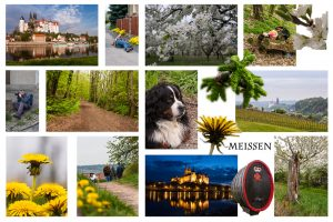 Collage-Meissen